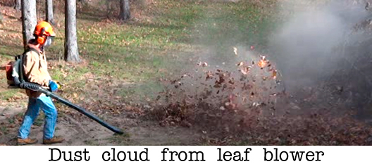 Dust cloud from leaf blower