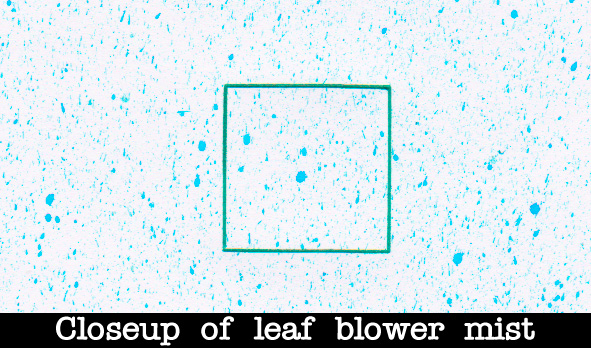 closeup of leaf blower mist